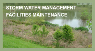 AW Landscapes, Inc. Commercial Services, Storm Water Management Pond Maintenance