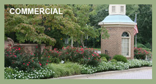 AW Landscapes, Inc. Services, Commercial
