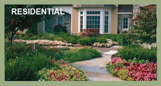 AW Landscapes, Inc. Services, Residential