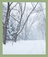 AW Landscapes, Inc. Seasonal Grounds Maintenance, Winter